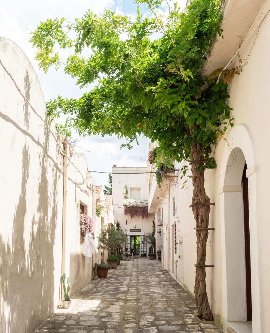Borgo San Gaetano Ingresso Vicolo